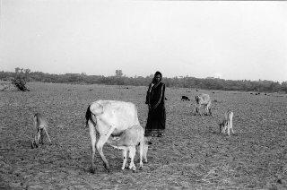 Rahela Khatun - Bangladesh redim 50p.jpg